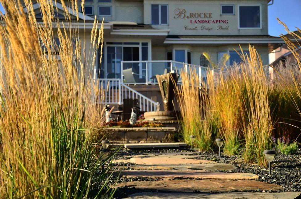 Karl Foerster | B. Rocke Landscaping | Winnipeg, Manitoba